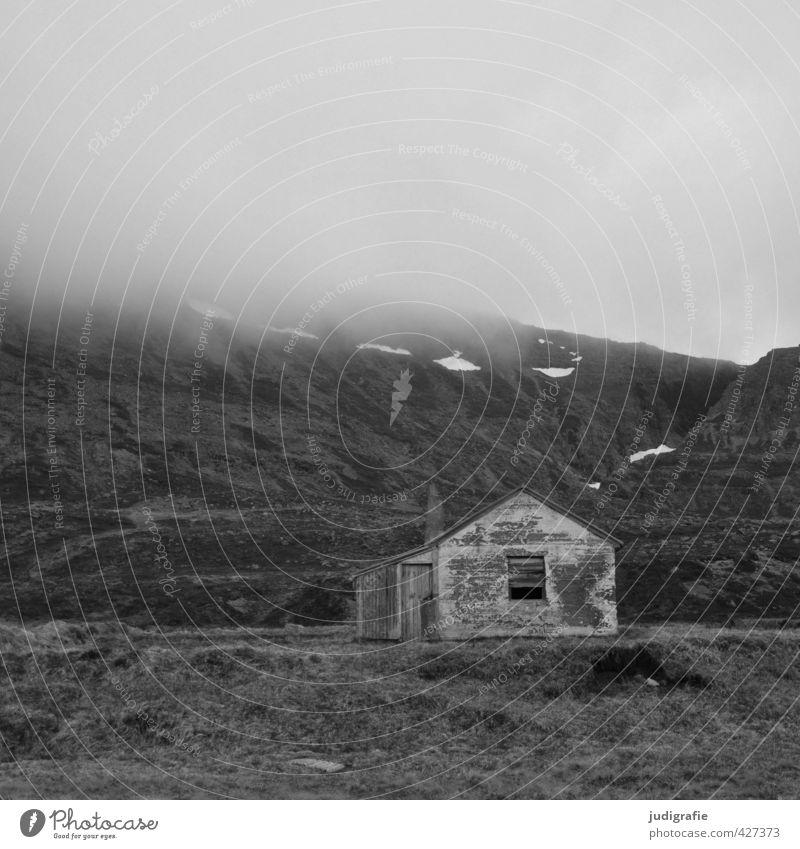 Island Umwelt Natur Landschaft Wolken Klima Nebel Felsen Berge u. Gebirge Westfjord Haus Hütte Gebäude alt dunkel gruselig klein Stimmung Einsamkeit