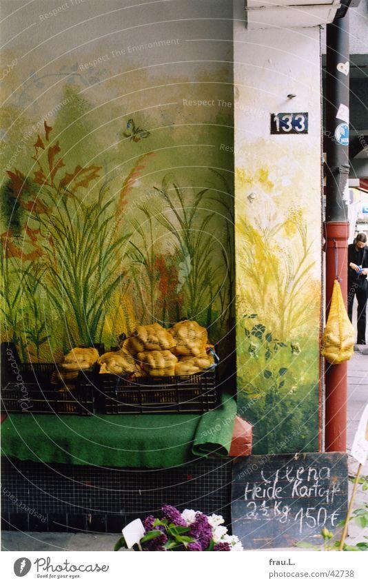 romantischer Straßenhändler Blume Arbeit & Erwerbstätigkeit Gemüse Händler Kartoffeln Wandmalereien Fliederbusch Straßenhändler Toreinfahrt Hofeinfahrt