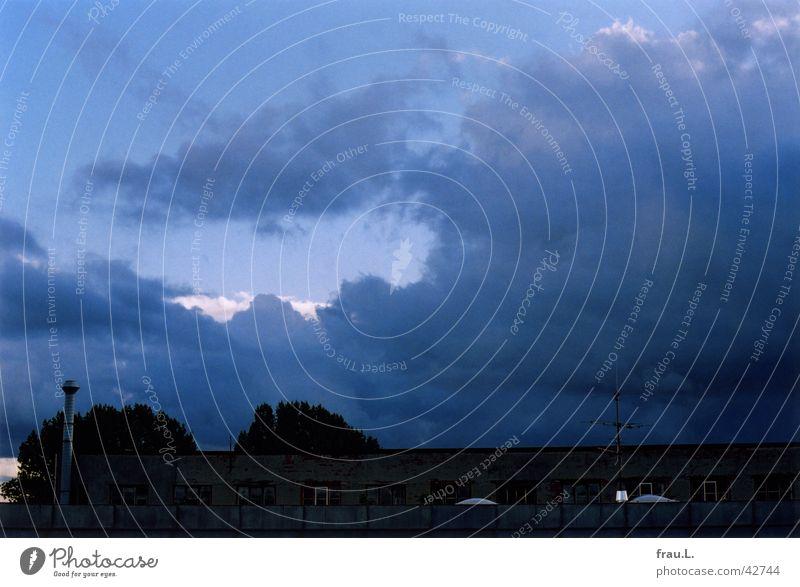 Abendblau Wolken Baum Dach Haus Licht Dämmerung Himmel Wetter