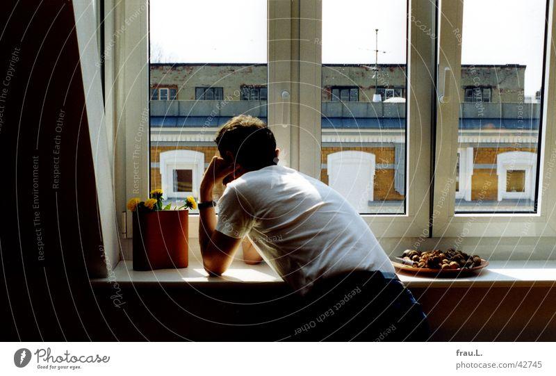 telefonieren Mann Fenster Stadt Haus Dach Wohnung sprechen Wohnzimmer Telefon plastikblumen Rücken hören Telefongespräch