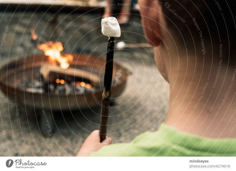 Junge röstet Marshmallows über Feuer marshmallow draussen Lagerfeuer Feuerschale Feuerstelle Wärme Holz Flamme brennen heiß Grillen Kindheit lecker Leckerbissen