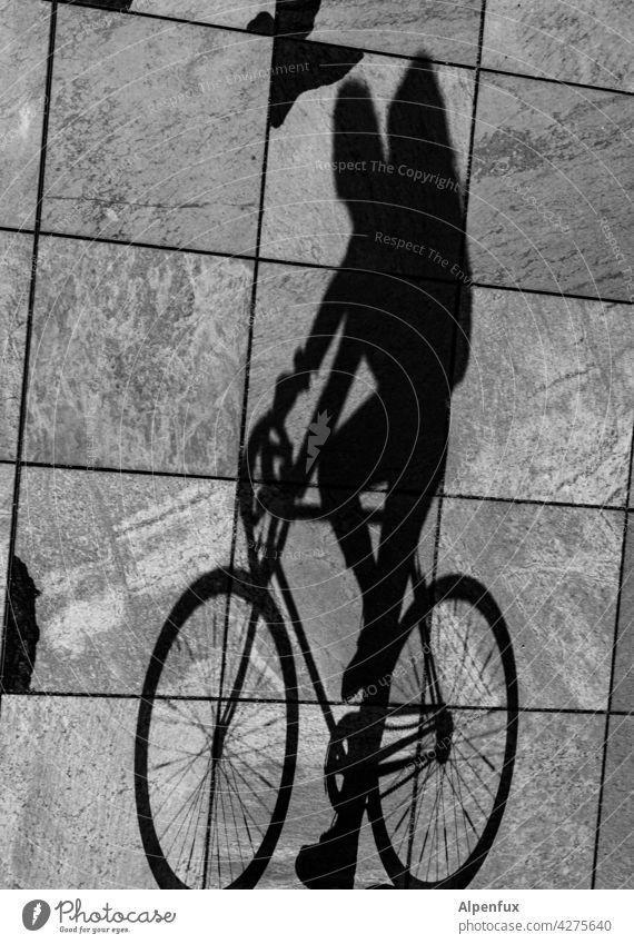 Auf den Kopf gestellt | Radler Fahrradfahrer Schatten Schattenspiel Licht Fahrradfahren Freizeit & Hobby Außenaufnahme Bewegung Fahrradtour Wege & Pfade Ausflug