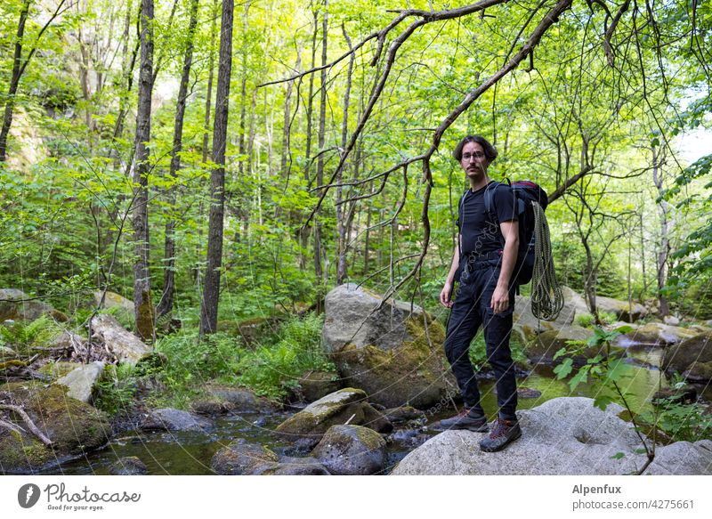 Adventure Wald Abenteuer abenteuerlustig Ferien & Urlaub & Reisen Klettern wandern Tourismus Natur Abenteuerurlaub Expedition Jugendliche Erholung Bach bachlauf