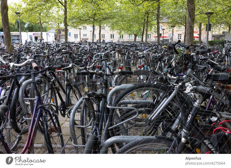 Anwohnerparkplatz Fahrrad Fahrradfahren Stadt Verkehrsmittel Außenaufnahme Parkplatz Fahrradtour Fahrradweg Parkplatzsuche Freizeit & Hobby Alternative