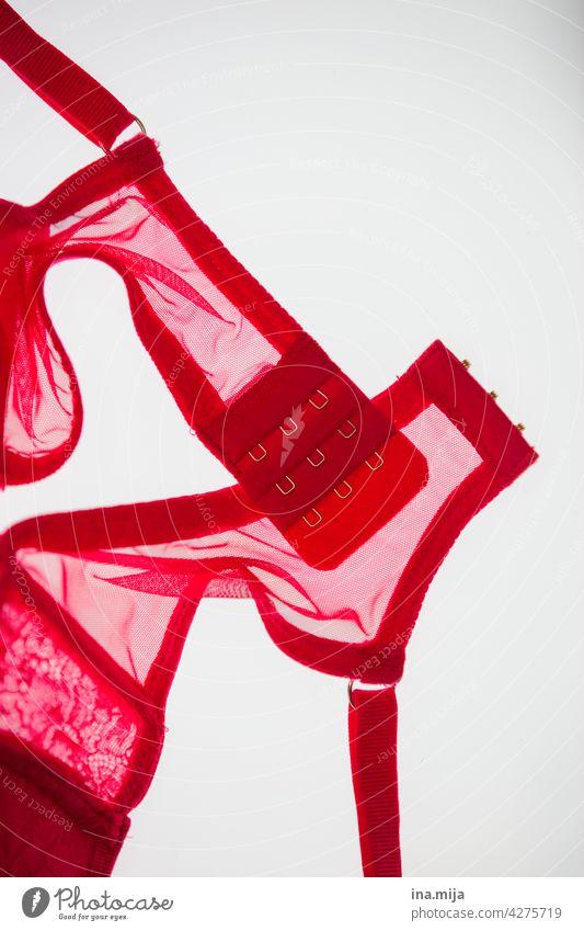 BH rot Unterwäsche feminin Erotik schön Frau Erwachsene Lady Sex sexy Sexualität Lust nackt Begierde ästhetisch Spitze bh-träger Brüste Busen Akt Verschluss