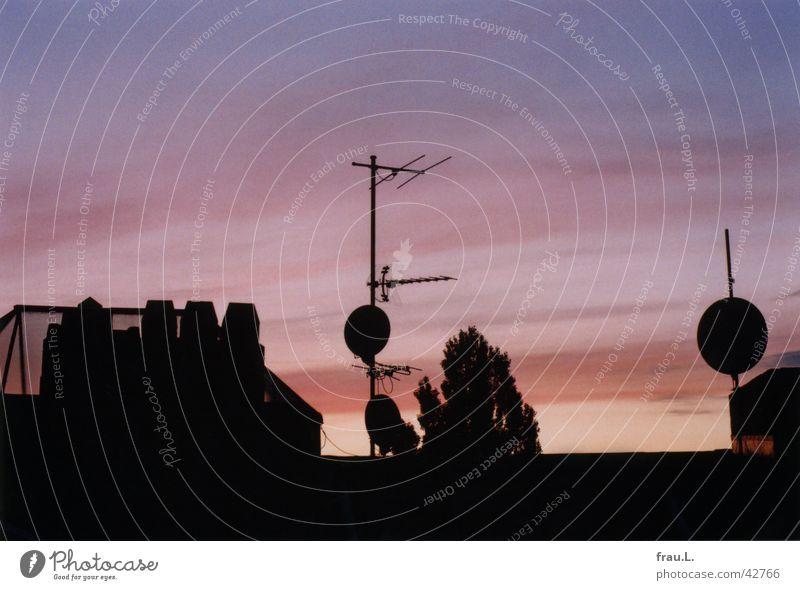 Blick am Abend II Himmel rosa Dach Technik & Technologie Abenddämmerung Schornstein Schalen & Schüsseln Elektrisches Gerät Oberlicht Pappeln