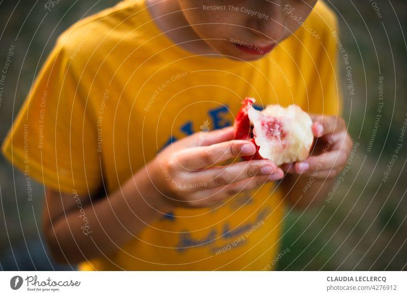 Junge isst einen Pfirsich einen Pfirsich essend Sommer Frankreich Farbfoto Frucht Lebensmittel Ernährung Gesunde Ernährung Vegetarische Ernährung Foodfotografie