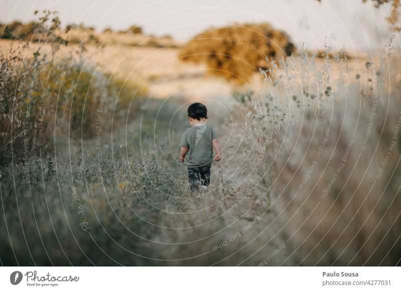 Rückansicht Kind auf dem Feld 1-3 Jahre Sommer Sommerurlaub Tag Ferien & Urlaub & Reisen Kleinkind Mensch Außenaufnahme Farbfoto Kindheit mehrfarbig