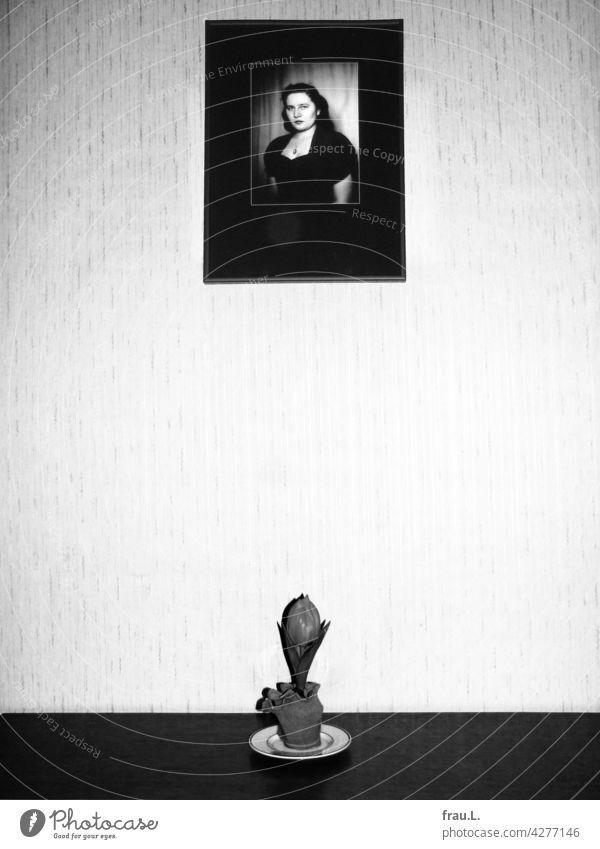 Traurige Tulpe Foto Bild Frau jung Erinnerung 1950er Jahre Ehefrau Trauer Wand Blume Blumentopf attraktiv schön