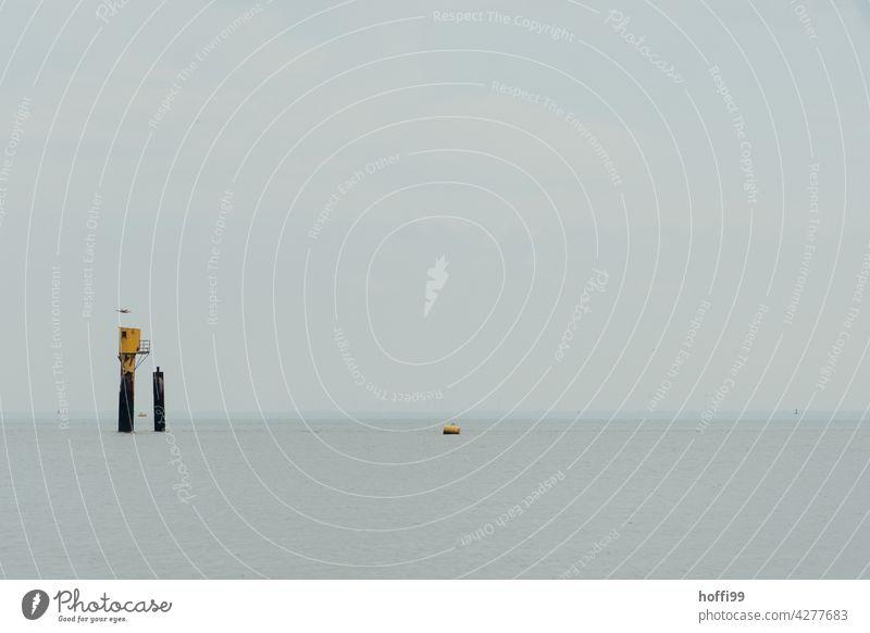 Rettungsbake mit Möwe und Boje im Wattenmeer Einsamkeit ruhiges Wasser Rettungsgeräte seichtes Wasser minimalistisch Nordsee Küste Strand Horizont Ferne Ebbe