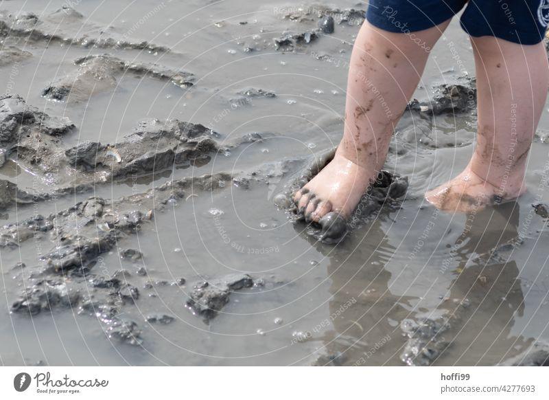Kinderfüße im Matsch bei Ebbe im Watt Schlick Wattwandern matschig Wasser nass dreckig Schlamm Pfütze Beine Nordsee Nordseeküste Nordseeinsel Nordseeurlaub