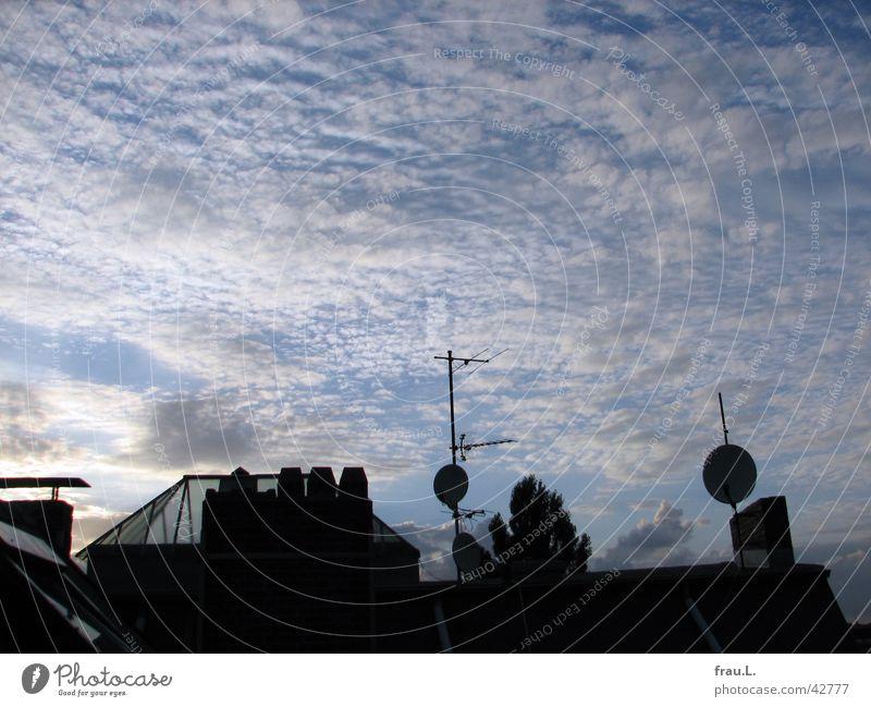 Blick am Abend III Himmel blau Stadt Baum Sommer Wolken Dach Technik & Technologie Schalen & Schüsseln Antenne Elektrisches Gerät Oberlicht Pappeln