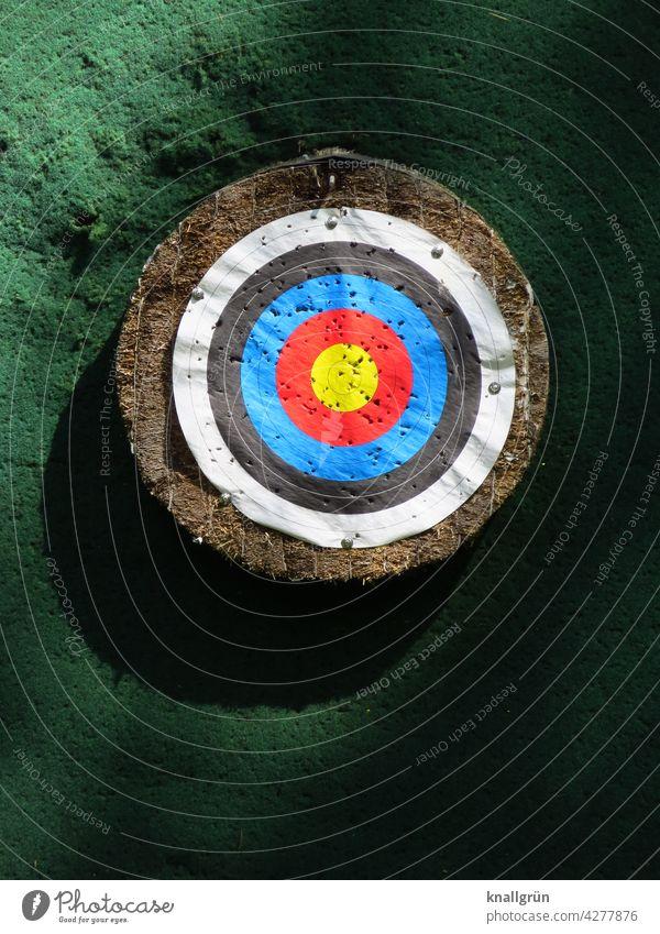 Zielscheibe Spielen Freizeit & Hobby Mittelpunkt zielen Treffer Genauigkeit Konzentration Erfolg Sport Präzision Bogenschießen Sportveranstaltung Farbfoto