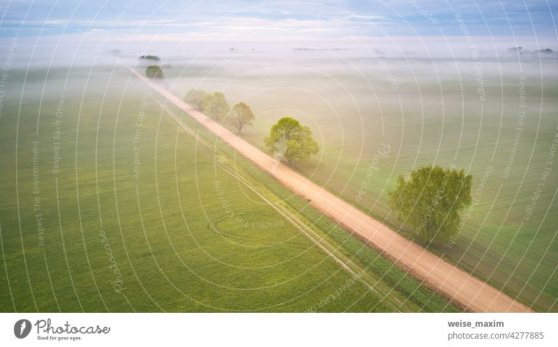 Luftaufnahme von ländlichen Feldweg und Bäume durch Nebel bedeckt. Früher nebliger Morgen. Frühling Sommer Felder. Rainy bewölkt launisch Wetter Straße Cloud