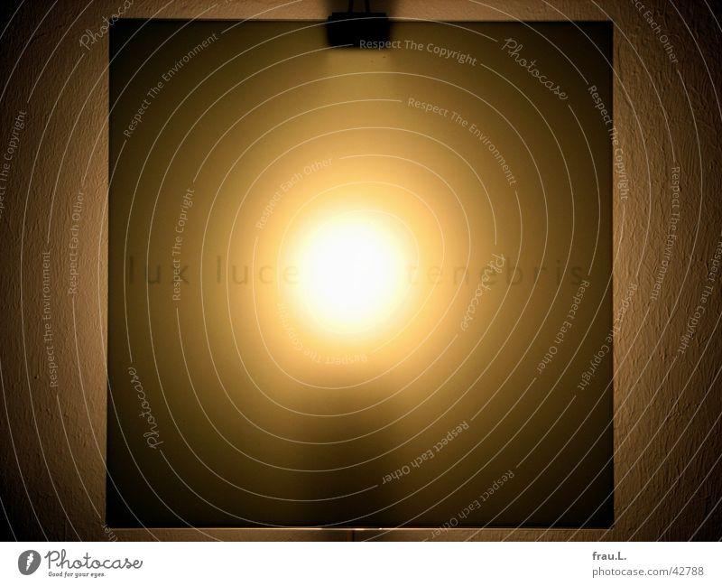 lux lucet in tenebris Wandleuchte Lampe Licht Glühbirne Wohnung Typographie Häusliches Leben Elektrisches Gerät Technik & Technologie Buchstaben Schriftzeichen