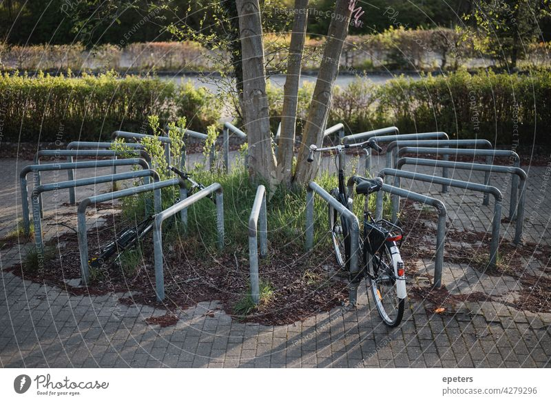 Fahrradstellplatz kreisförmig angeordnet in Abendsonne Stellplatz Fahrradständer Verkehrswende Schatten Licht Sonne Sonnenlicht parken Parkplatz rund Kreis