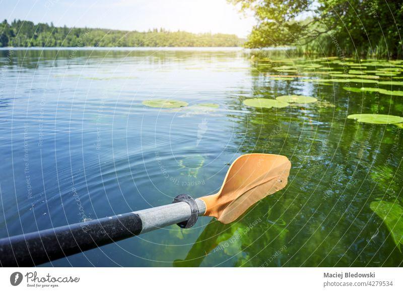 Kajakpaddel im Wasser, selektiver Fokus. Sport Natur Kanu Abenteuer Paddel See Fluss Aktivität Sommer Urlaub Ruder Gerät Freizeit Reise Erholung Feiertag