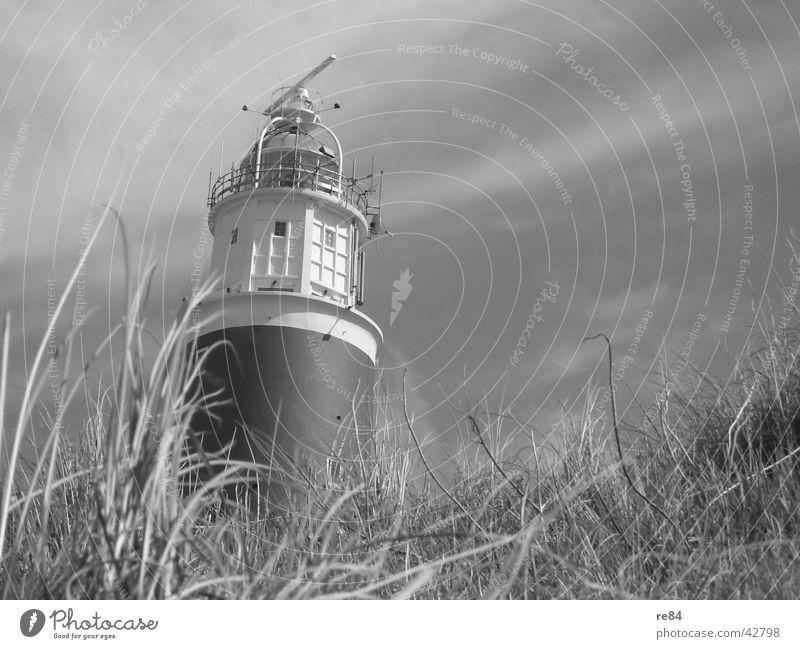 Glühtürmchen Himmel weiß Wolken schwarz Architektur Gras grau Wind Turm Stranddüne Nordsee Leuchtturm Niederlande Texel