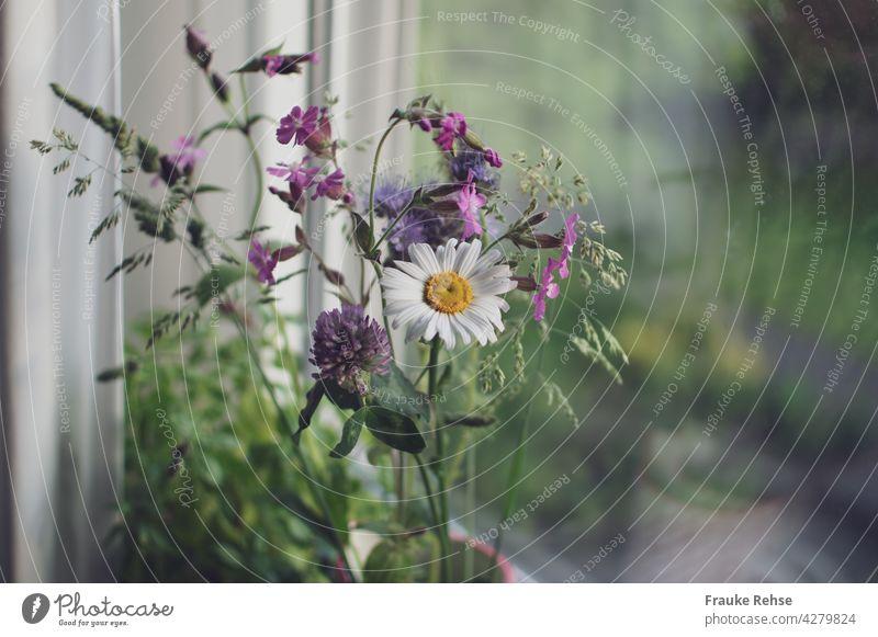 Wiesenblumen in der Vase auf der Fensterbank Strauß gepflückt pflücken Vase mit Blumen Blumenstrauß Dekoration & Verzierung Innenaufnahme weiß rosa Blüte Sommer