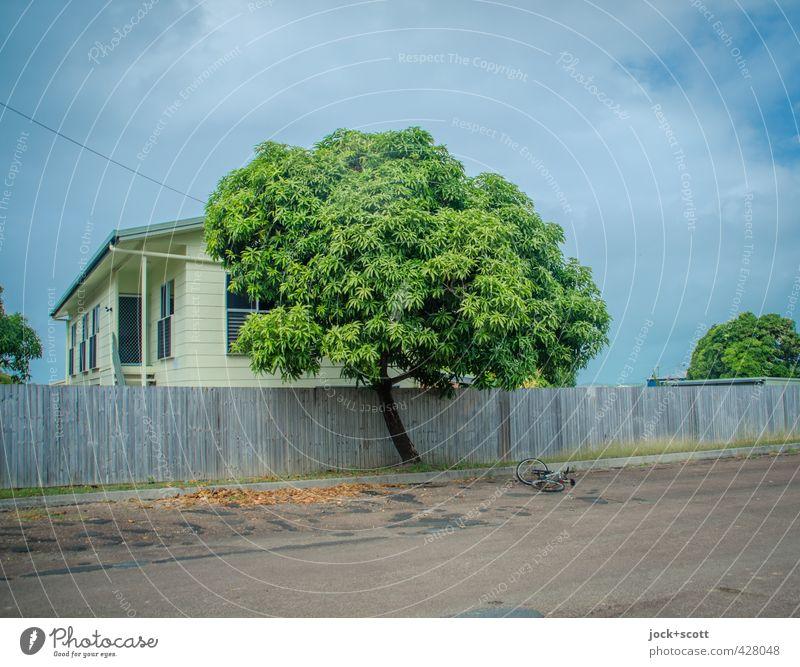 second Day exotisch Himmel Baum Queensland Straße Fahrrad liegen retro Wärme Gelassenheit Idylle intensiv Holzzaun Holzhaus tropisch Naturphänomene Morgen
