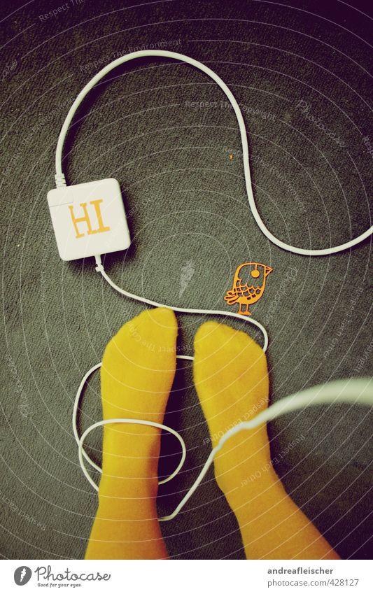 Palim Palim 1 Mensch füttern Vogel Papiermüll Netzwerkkabel Teppich Strumpfhose gelb Ente Linie Raum Kunstwerk ästhetisch musisch Langeweile Vernetzung Knoten