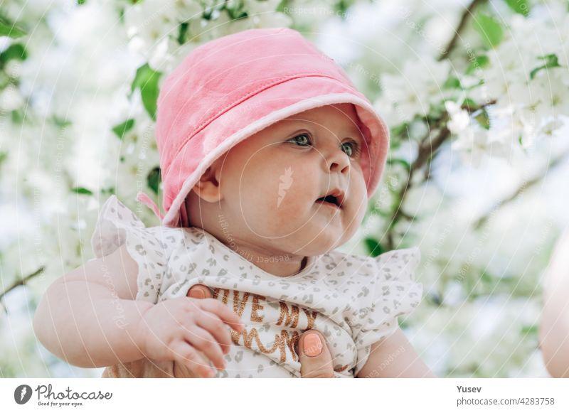 Porträt eines süßen Baby-Mädchens mit blauen Augen in einem rosa Hut. Nahaufnahme. Weicher Fokus. Glückliche Kindheit Konzept. Lebensstil Fotografie. Blühende Apfelbäume Frühling Hintergrund. Sonniger Tag