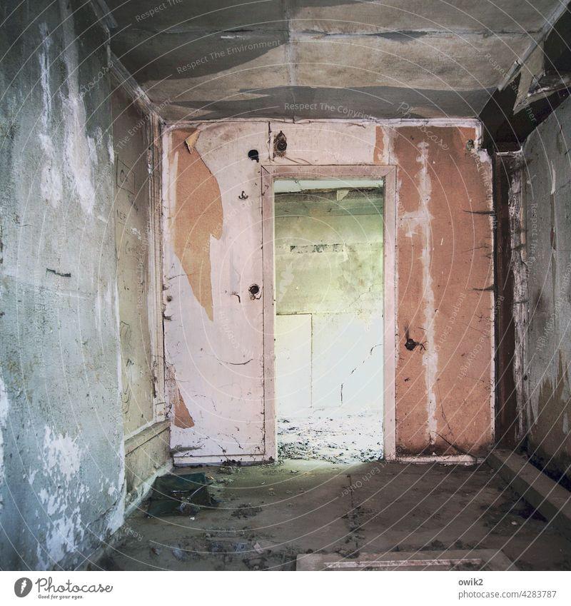 Nächstes Stadium Abrissgebäude Ruine verlassen Durchblick trashig düster gefährlich Menschenleer Bronx Wand Farbfoto kaputt Haus alt Zerstörung dreckig