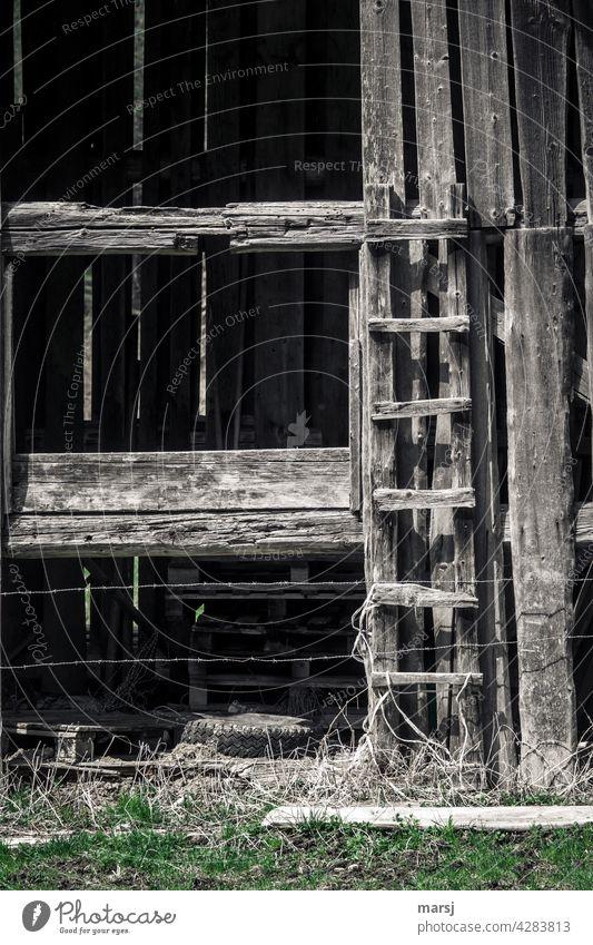 Kurze, rustikale und alte Aufstiegshilfe (Holzleiter) mit Stacheldraht gesichert. Hütte Holzstruktur uralt solide Zeitgeschichte Einsamkeit idyllisch einfach