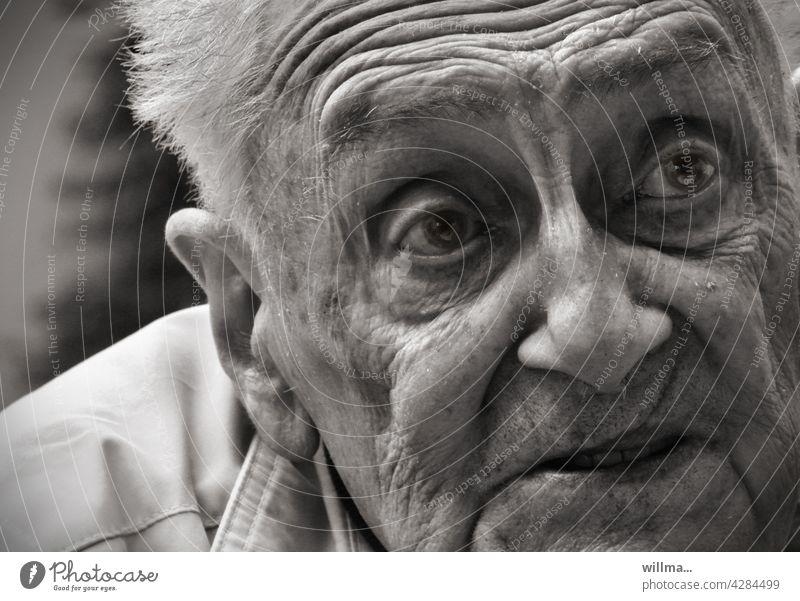 hochbetagt und geistig fit Greis Porträt Runzeln Falten Gesicht erzählen Lebenserfahrung sw fragen sorgenvoll Alter Rentner 80 85 90 Hoffnung Glaube zuhören