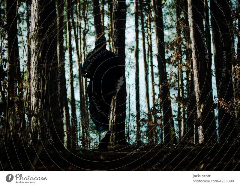 Wandern zwischen Baum + Borke Baumstamm Wald Natur Strukturen & Formen Silhouette Schatten Lichterscheinung Gegenlicht Kontrast Spaziergang Umwelt Franken
