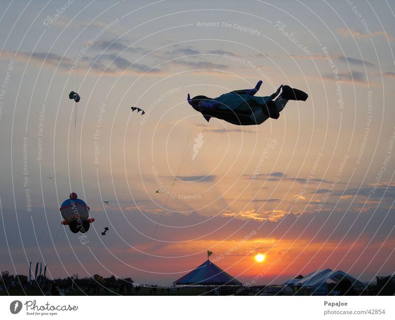 Graf Zahn Wasser Himmel Sonne Meer blau Wolken Beleuchtung orange Romantik Freizeit & Hobby Drache Drachenfest