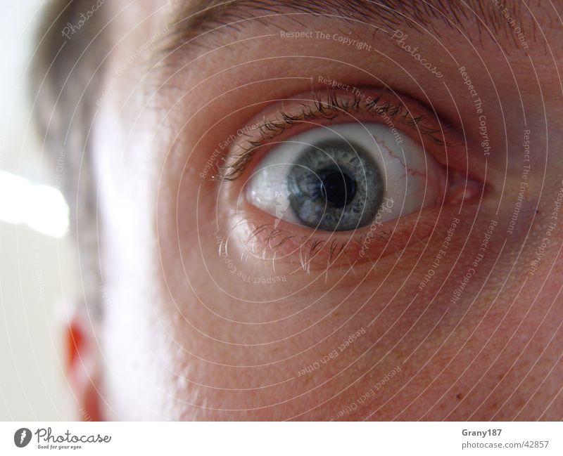 AAAAAAHHHHHHHHHH!!!!!! Mensch Mann blau Gesicht Auge Leben kalt See Angst Perspektive Coolness Ohr nah Wut Panik Wimpern