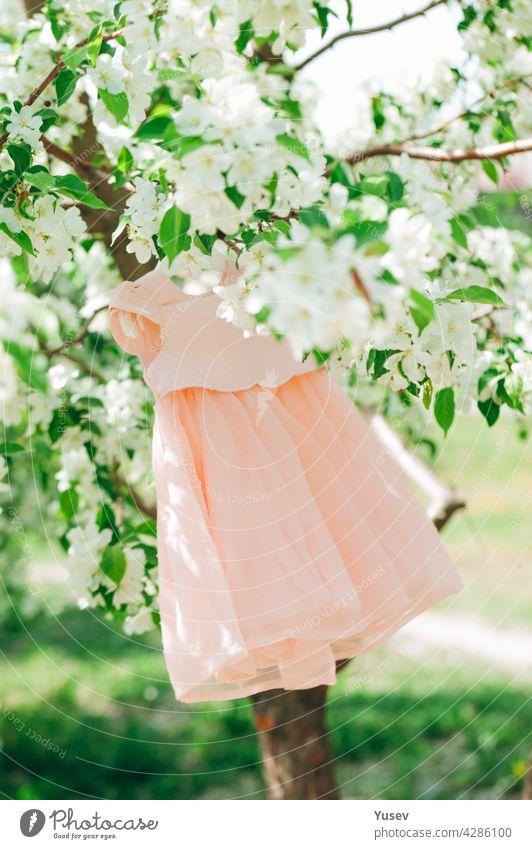Eleganz stilvolle pfirsichfarbenen Baby-Kleid hängt an einem blühenden Apfelbaum. Grüner Hintergrund. Frühlingszeit. Blühende Apfelplantage. Frühling Konzept der Erneuerung der Natur, positive Emotionen. Vertikale Aufnahme