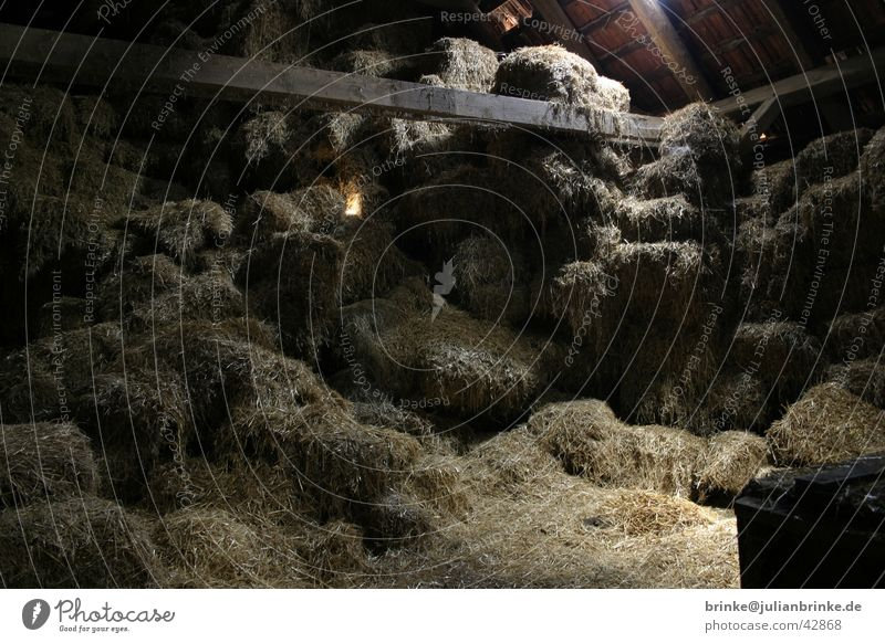 Stroh - Boden dunkel Bodenbelag Bauernhof Handwerk Dachboden Lager Krefeld