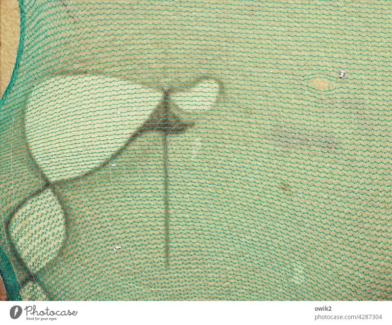 Kleiner Onkel Detailaufnahme Bauplane Netz Gerüst Gebäude Mauer Nahaufnahme Modernisierung Außenaufnahme Strukturen & Formen Abdeckung Fassade Kunststoff