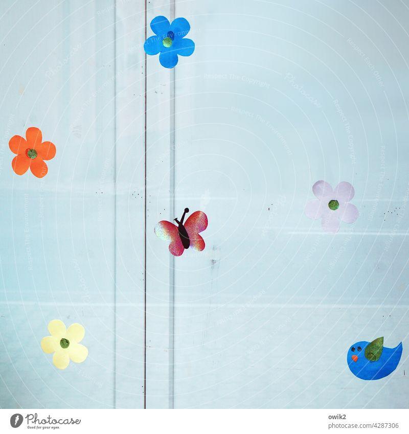 Hängende Gärten Blümchen Blüten hängend Schaufenster Dekoration & Verzierung kindlich einfach bunt Bastelarbeit Kreativität Schmetterling Hintergrund neutral