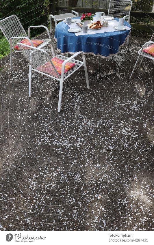 gedeckter Kaffeetisch auf einer blütenbedeckten Terrasse Tisch gedeckter Tisch Blütenblätter Gartenmöbel Einladung Sitzgelegenheit Gastfreundschaft Gartenstuhl