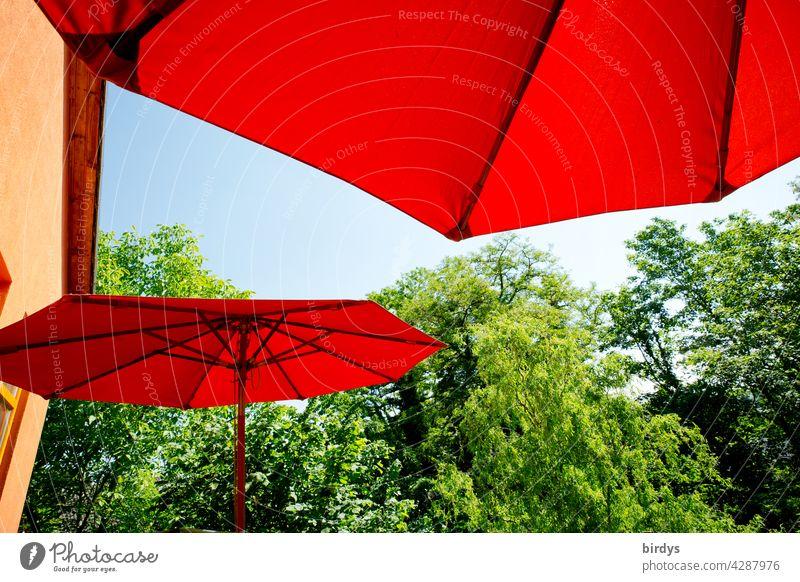 heißer Sommer. rote Sonnenschirme auf dem Terrasse mit blauem Himmel umgeben von Bäumen Hitze zuhause sommerlich Sonnenschutz Sommerurlaub blauer Himmel Haus