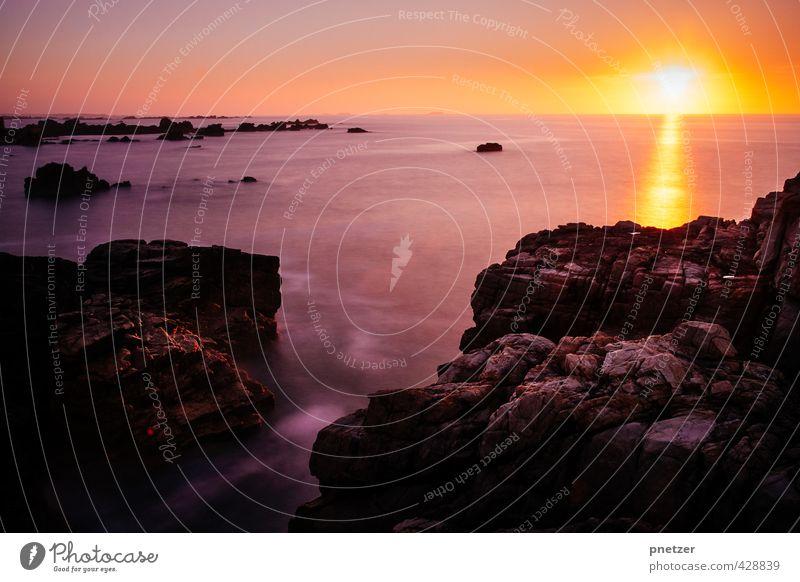 Die Ruhe Umwelt Natur Landschaft Urelemente Wasser Himmel Wolkenloser Himmel Horizont Sonne Sonnenaufgang Sonnenuntergang Sonnenlicht Sommer Klima Wetter