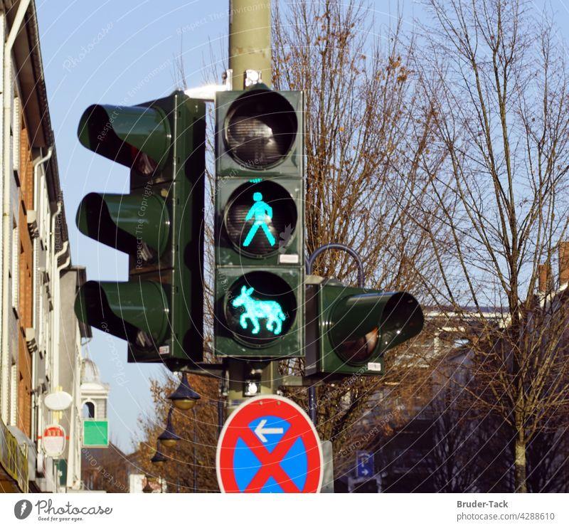 Grüne Esel-Ampel in Wesel Esel Ampel grüne Ampel grünsignal Eselampel ampelphase grünphase Esel-motiv Verkehr Verkehrszeichen Straßenverkehr Straßenkreuzung