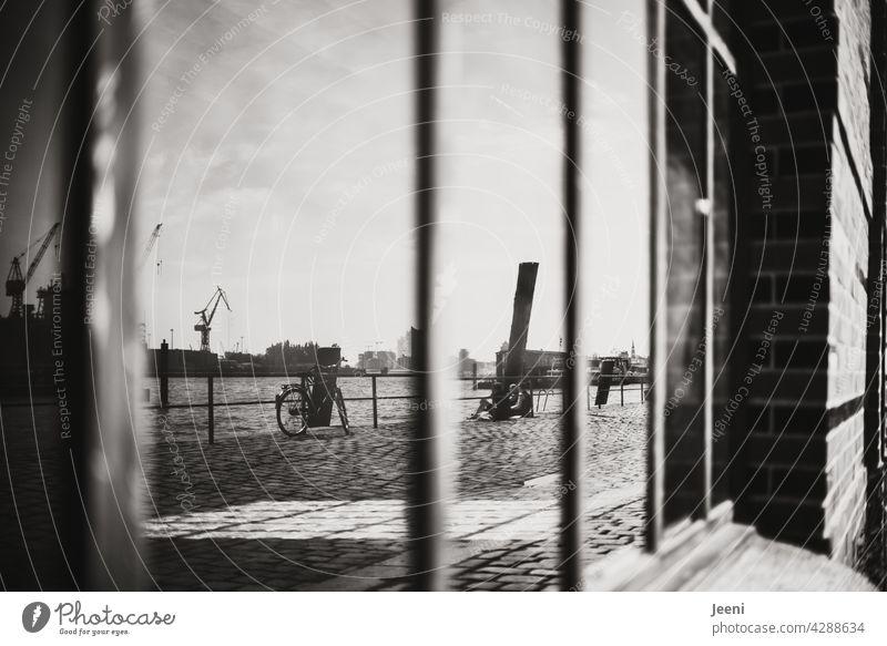 Fensterblick zum Hafen Hafenstadt Hafengebiet Hafenstraße Fensterscheibe Fensterscheiben Spiegel Spiegelbild Spiegelung kräne Kran Hafenkran Wasser Elbe Hamburg