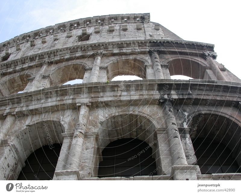 Kolosseum in Rom Wildtier Vergangenheit historisch Zirkus Römerberg Hinrichtung Gladiator Caesar Tempel Forum Romanum