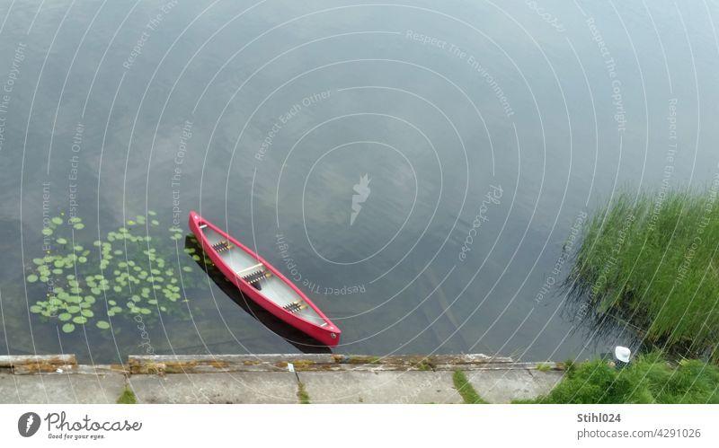 Kanu einsam am Bootsanleger - mit Seerosen und Schilf KAnu bootssteg Vogelperspektive Wasser ruhig windstill rot Sonnenhut Frau versteckt Pause Ruhe Seeufer