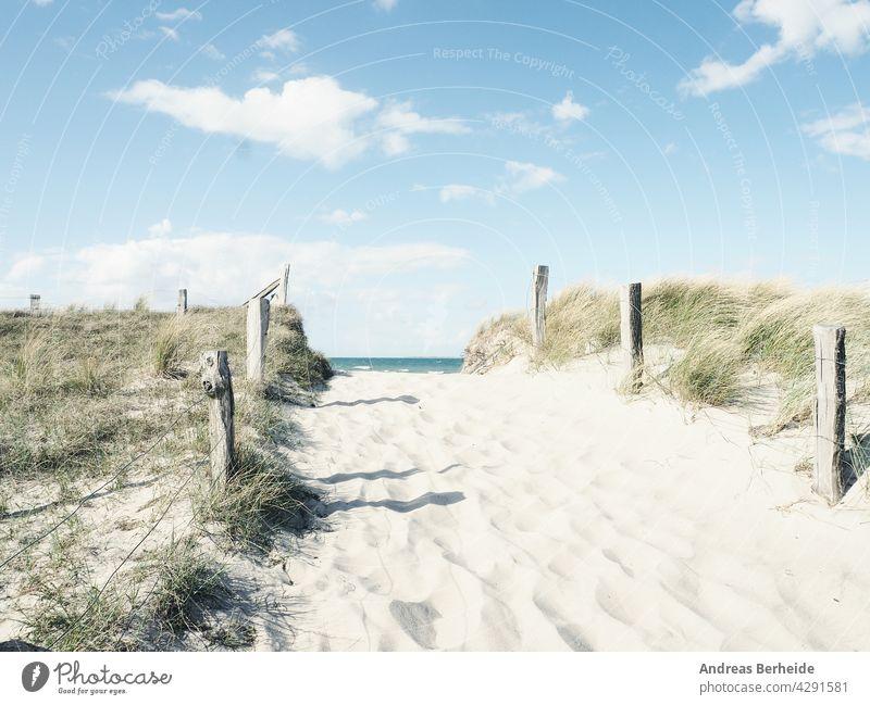Weg zum Strand, Ostsee Deutschland Hintergrund baltisch Strandrasen schön blau Brise Küste wüst trocknen Düne Dunes Europa Zaun Wald Gras grün Gesundheit