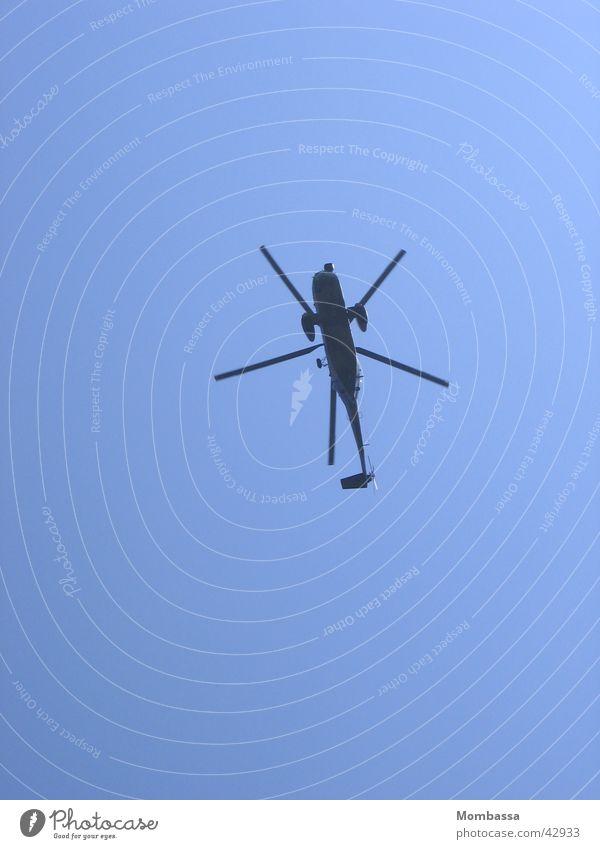 großes Insekt Hubschrauber Froschperspektive Luftverkehr Himmel