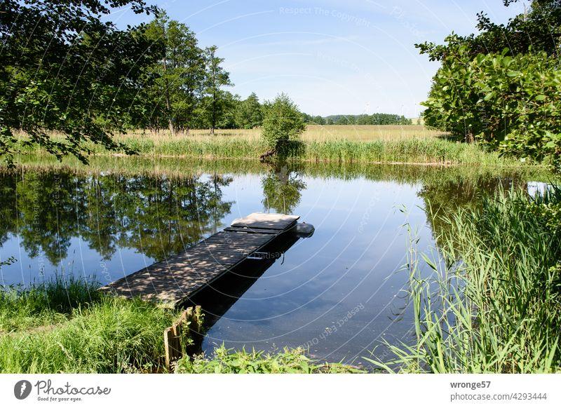 Die Warnow mit beiden Ufern und einen schräg in die Flussmitte hineinragenden hölzernen Bootssteg unter sommerlichen blauen Himmel Natur Idylle idyllisch