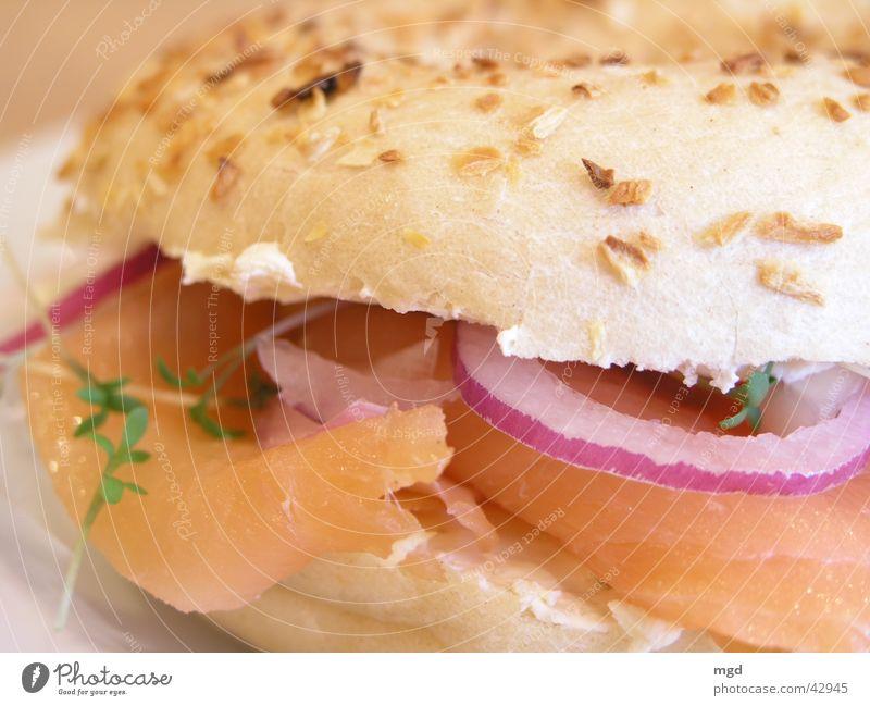 Einmal Lachs mit Zwiebeln bitte Ernährung Gesundheit Lebensmittel Fisch Speise lecker Brötchen Mahlzeit Zwiebel Butter Kresse Lachs Bagel