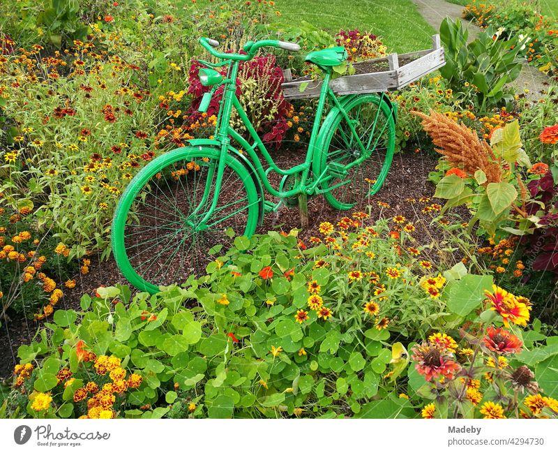 Grün lackiertes Hollandrad in einem Blumenbeet im Sommer im Vier-Jahreszeiten-Park in Oelde bei Warendorf in Westfalen im Münsterland Rad Damenrad Fahrrad