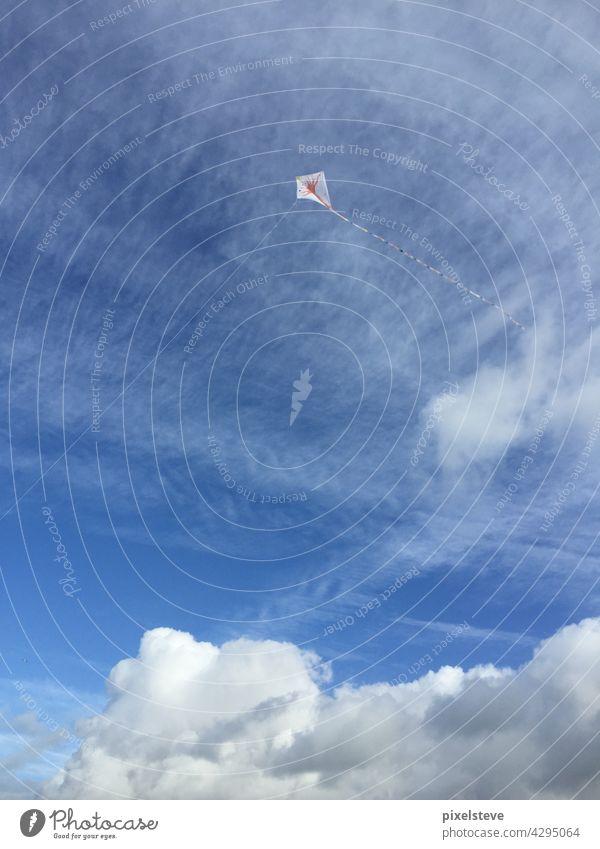 Drachen am Himmel an einem schönen Herbsttag Schnur blau Sommer Wind Blauer Himmel Freiheit Abheben fliegen Glück Kindheit hoch Textfreiraum Sonne Natur oben