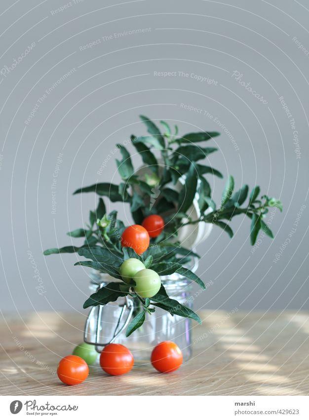 Tomätchen Gemüse Ernährung Essen Pflanze Sträucher grün rot Tomate Tomatenplantage Strauchtomate Stillleben lecker Dekoration & Verzierung Farbfoto